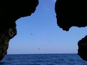 Cueva de los golondrinos 3